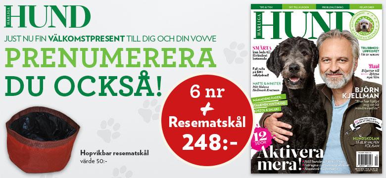 https://harligahund.prenservice.se/KodLandning/Index/?Internetkod=423-4231049